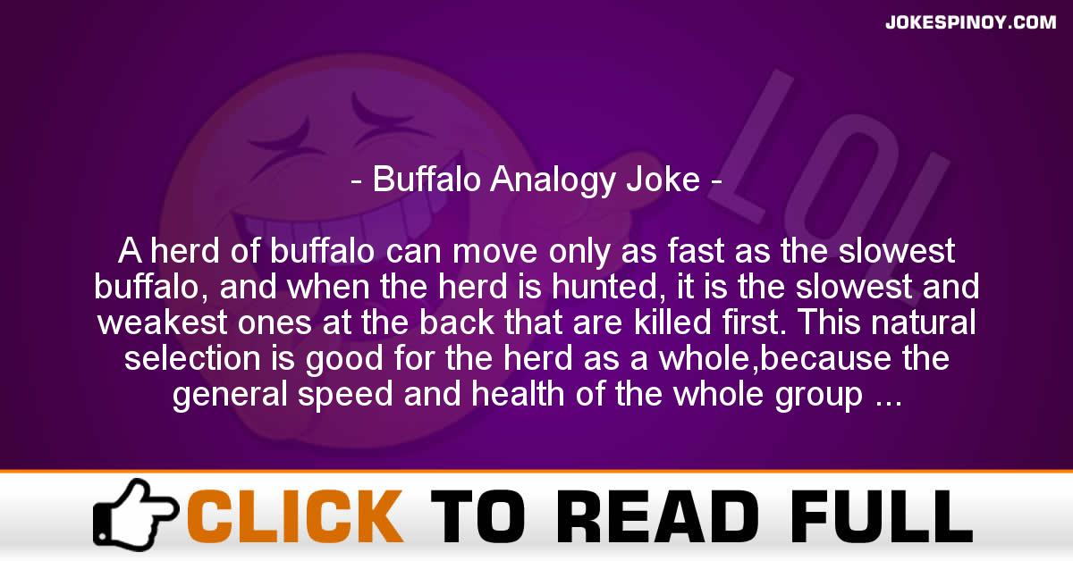 Buffalo Analogy Joke