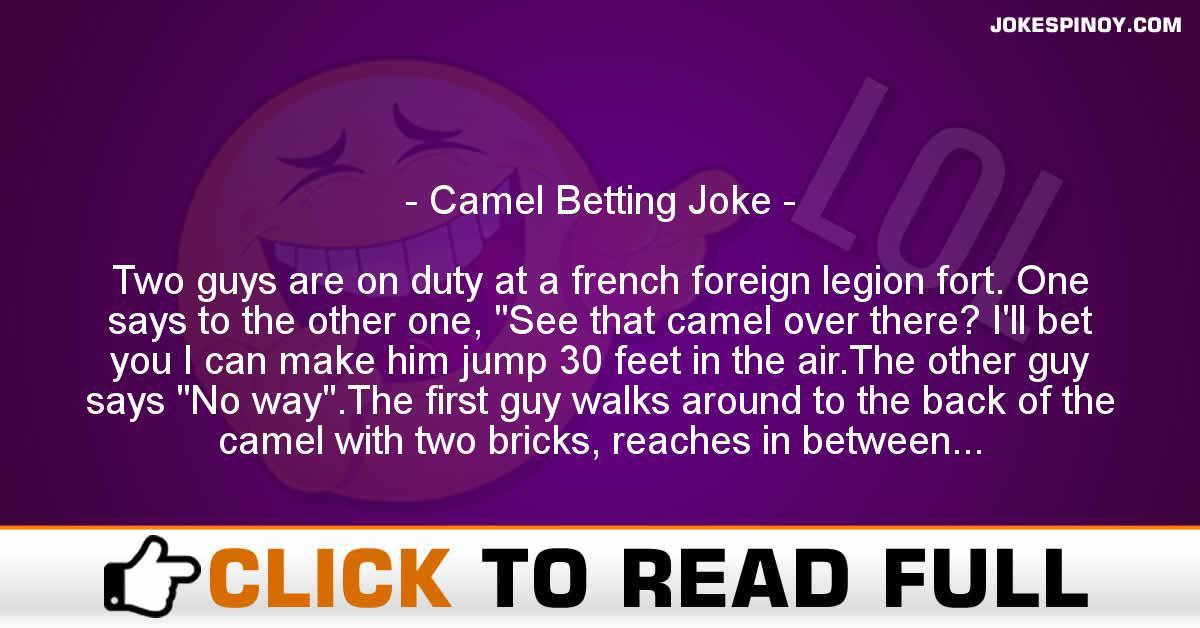 Camel Betting Joke