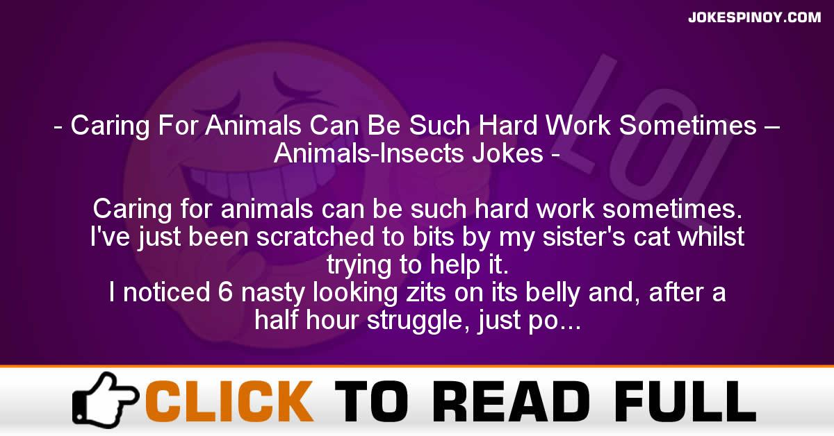 Caring For Animals Can Be Such Hard Work Sometimes – Animals-Insects Jokes