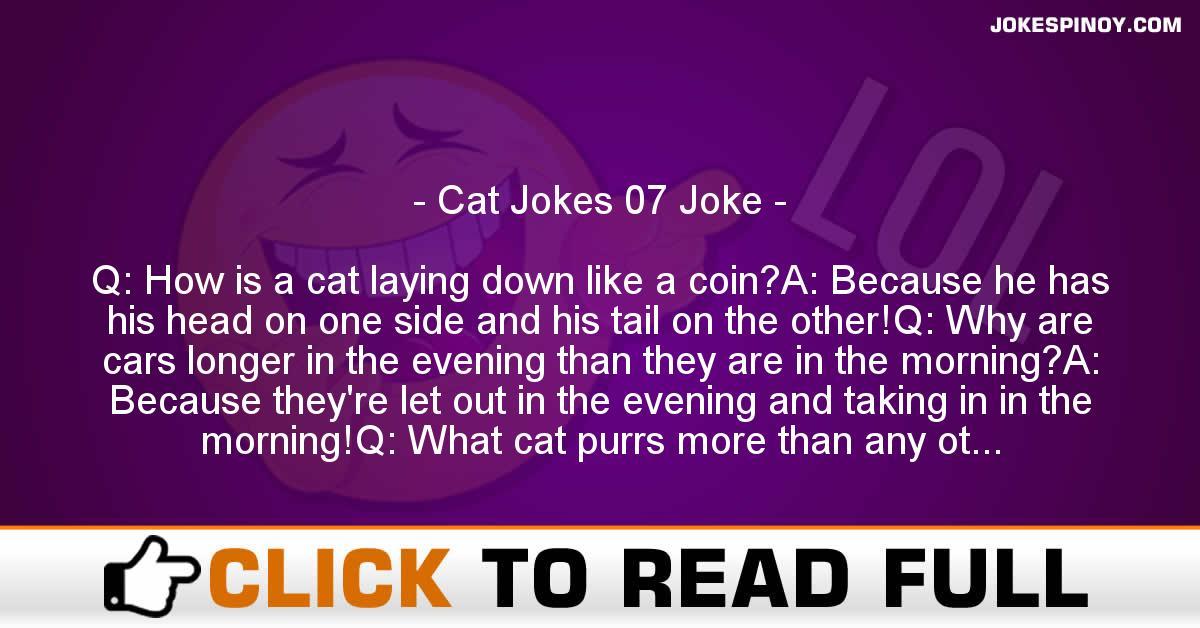 Cat Jokes 07 Joke