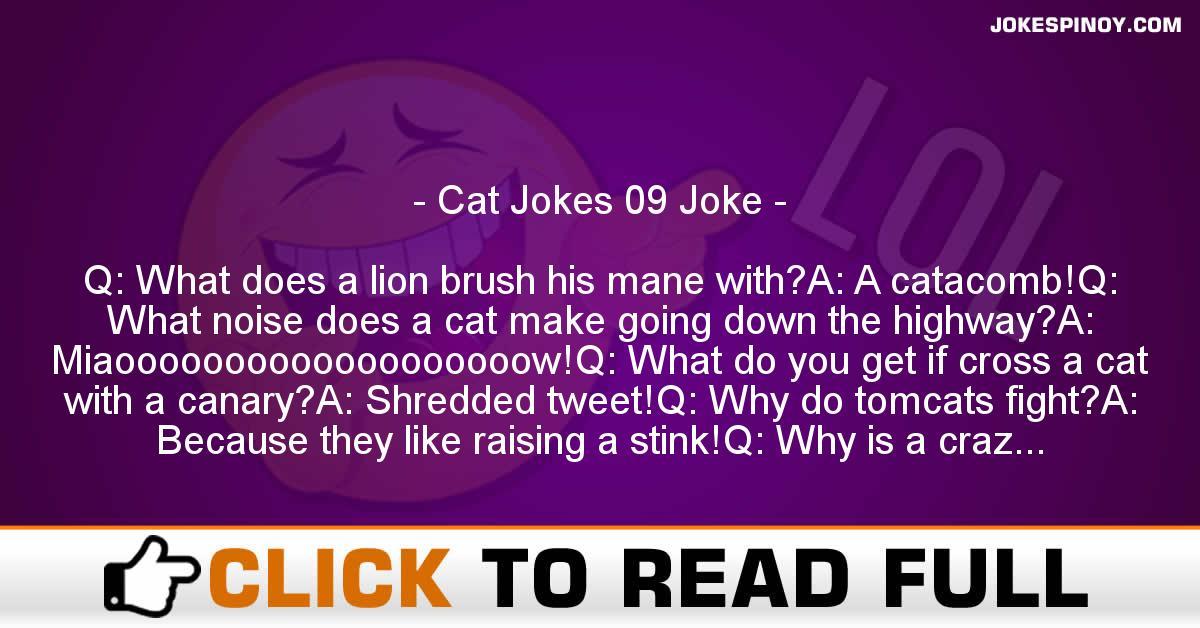Cat Jokes 09 Joke