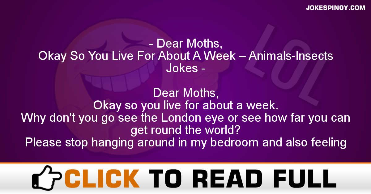 Dear Moths, Okay So You Live For About A Week – Animals-Insects Jokes
