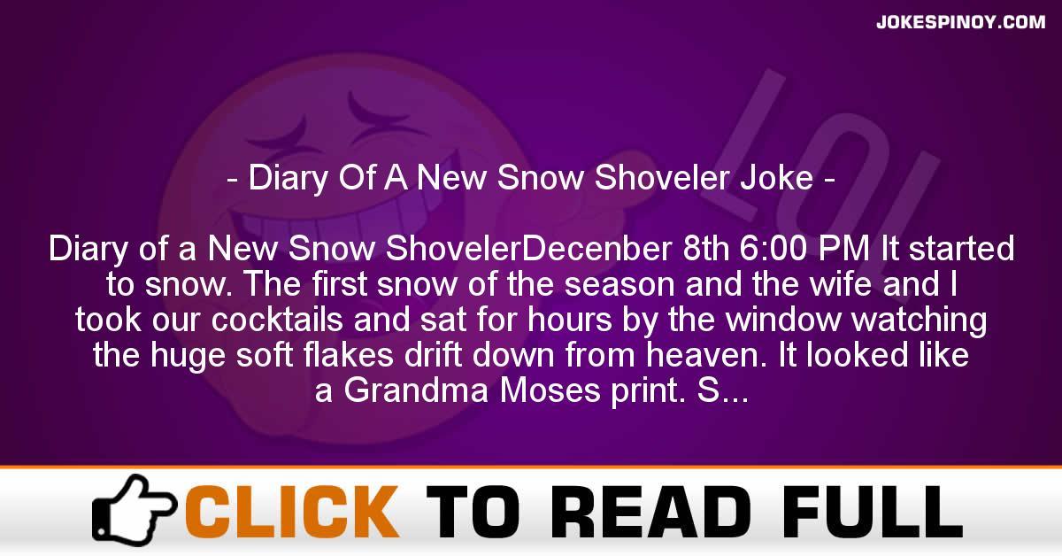 Diary Of A New Snow Shoveler Joke