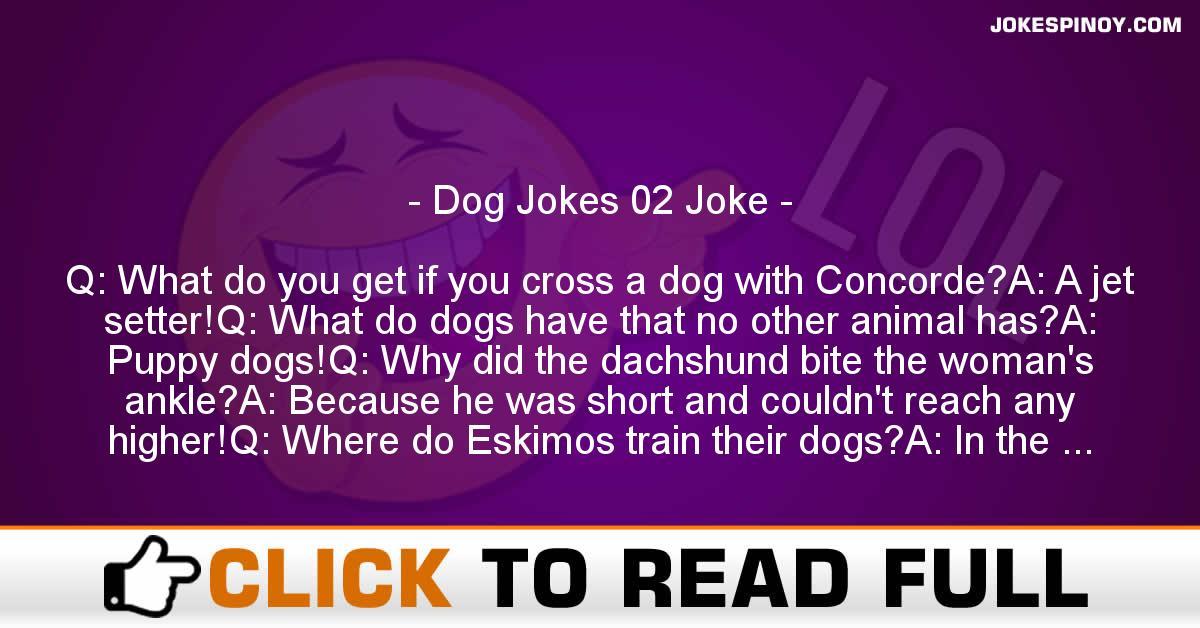 Dog Jokes 02 Joke