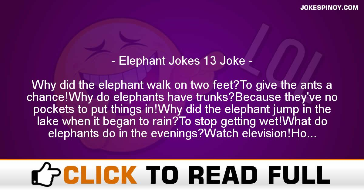 Elephant Jokes 13 Joke