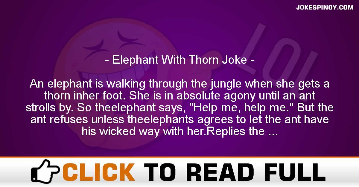 Elephant With Thorn Joke