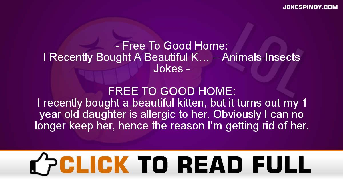 Free To Good Home: I Recently Bought A Beautiful K… – Animals-Insects Jokes