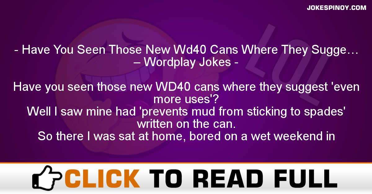 Have You Seen Those New Wd40 Cans Where They Sugge… – Wordplay Jokes