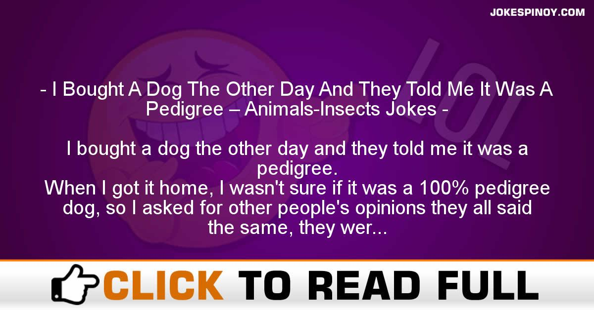 I Bought A Dog The Other Day And They Told Me It Was A Pedigree – Animals-Insects Jokes