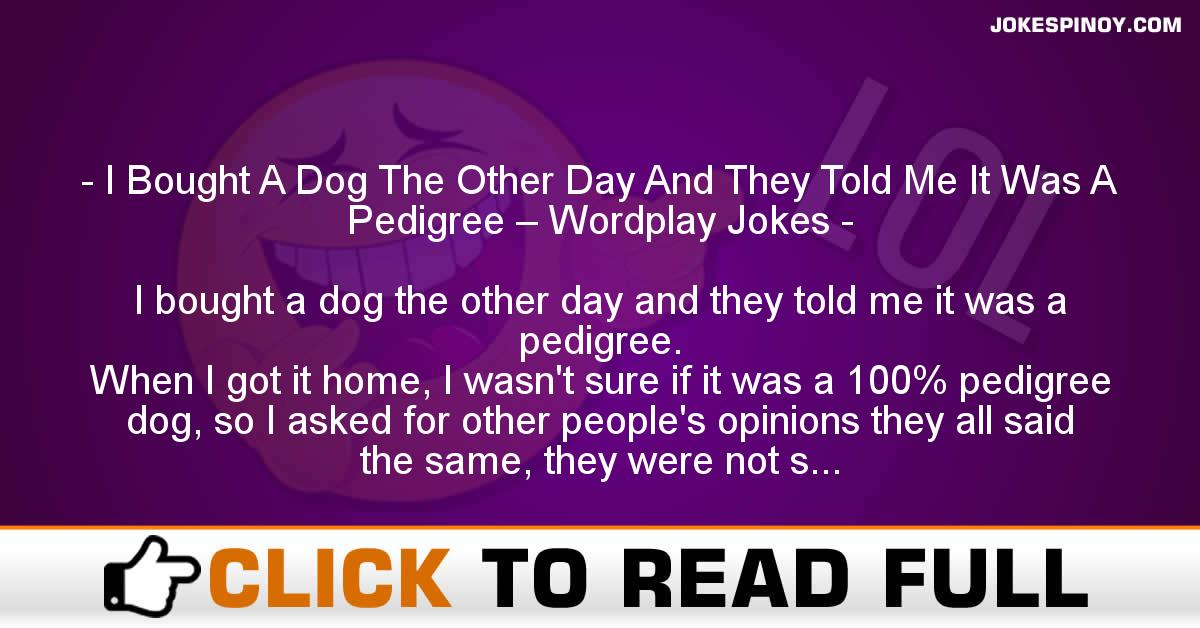 I Bought A Dog The Other Day And They Told Me It Was A Pedigree – Wordplay Jokes