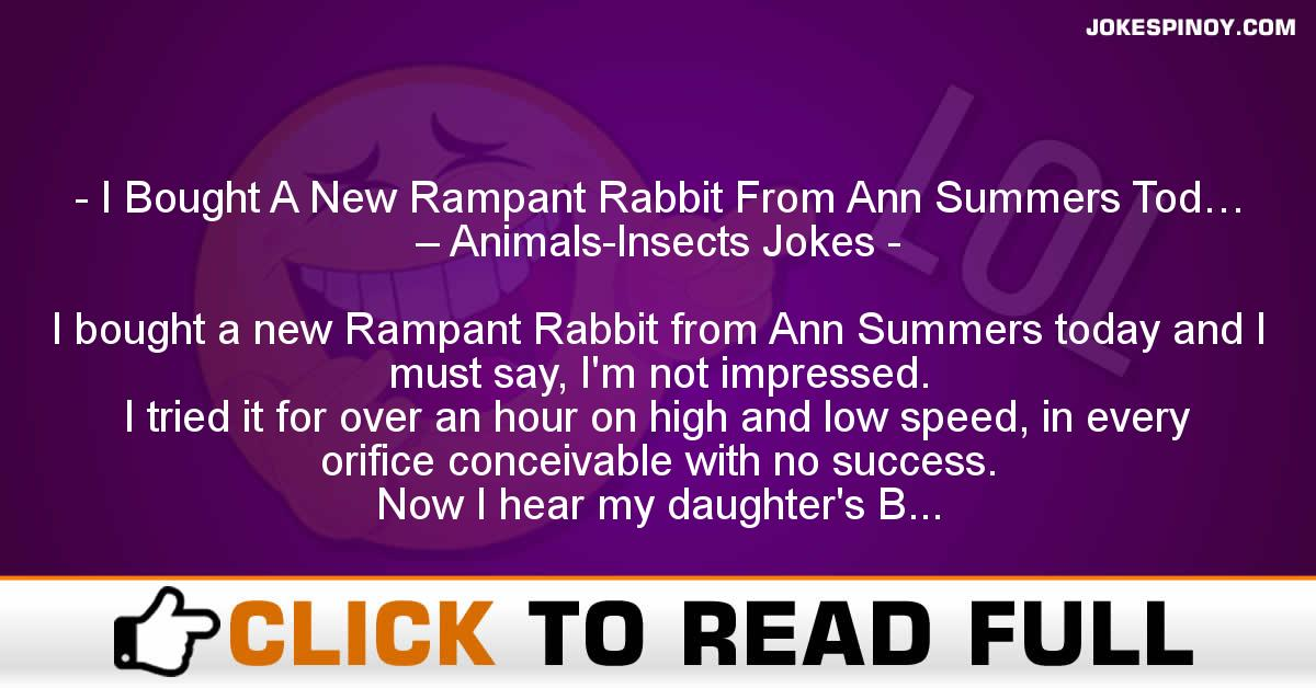 I Bought A New Rampant Rabbit From Ann Summers Tod Animals Insects Jokes