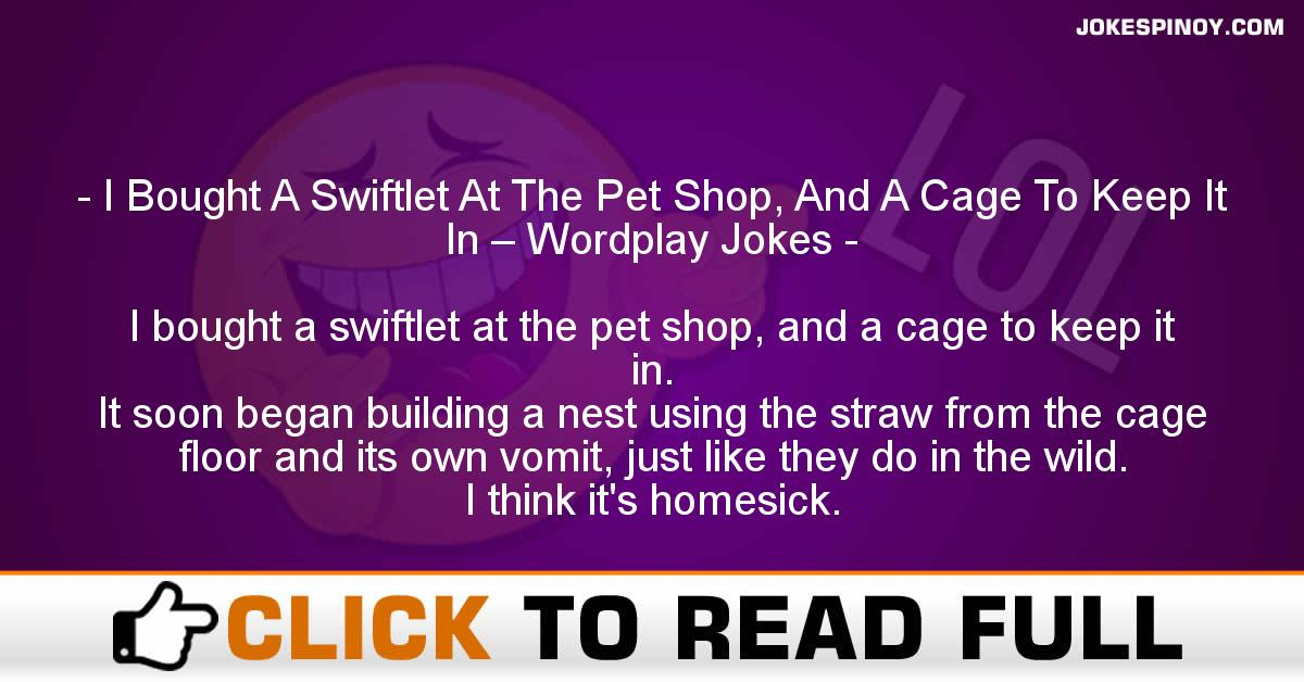 I Bought A Swiftlet At The Pet Shop, And A Cage To Keep It In – Wordplay Jokes