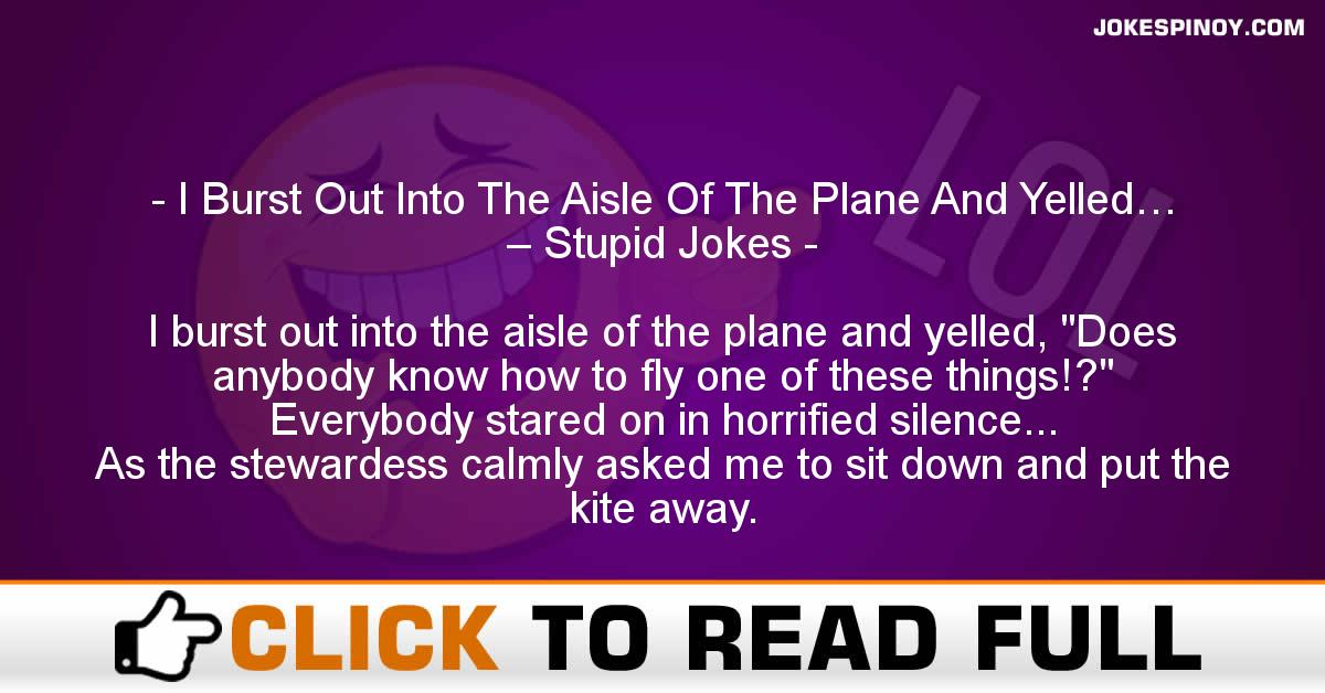 I Burst Out Into The Aisle Of The Plane And Yelled… – Stupid Jokes