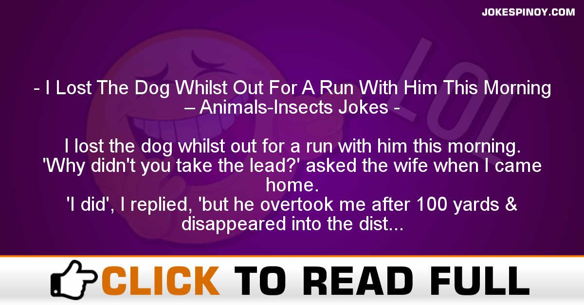 I Lost The Dog Whilst Out For A Run With Him This Morning – Animals-Insects Jokes