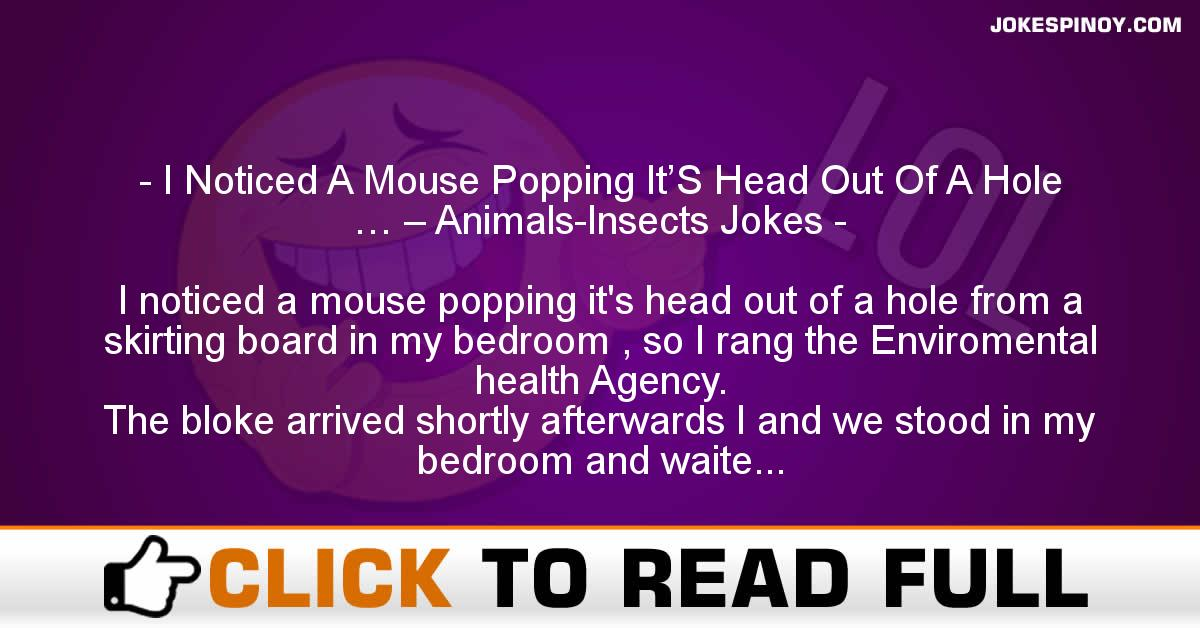 I Noticed A Mouse Popping It'S Head Out Of A Hole … – Animals-Insects Jokes