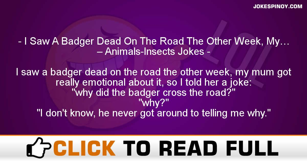 I Saw A Badger Dead On The Road The Other Week, My… – Animals-Insects Jokes