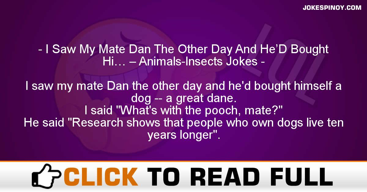 I Saw My Mate Dan The Other Day And He'D Bought Hi… – Animals-Insects Jokes