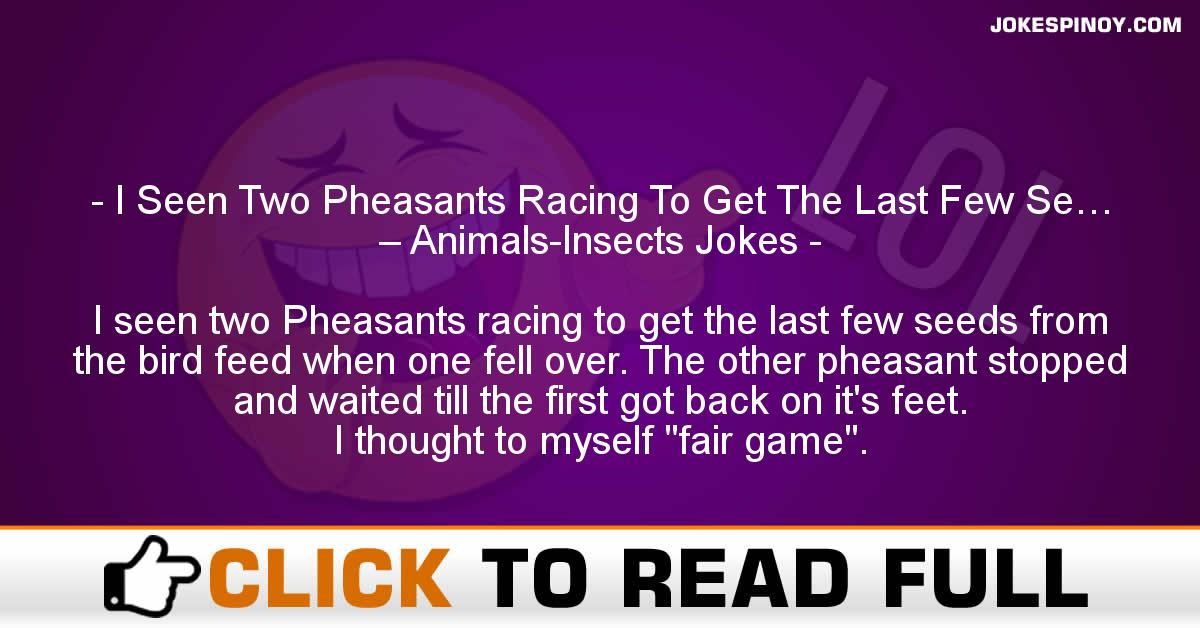 I Seen Two Pheasants Racing To Get The Last Few Se… – Animals-Insects Jokes