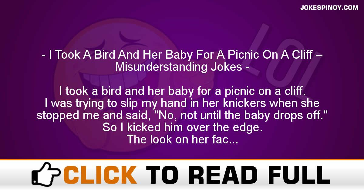 I Took A Bird And Her Baby For A Picnic On A Cliff – Misunderstanding Jokes