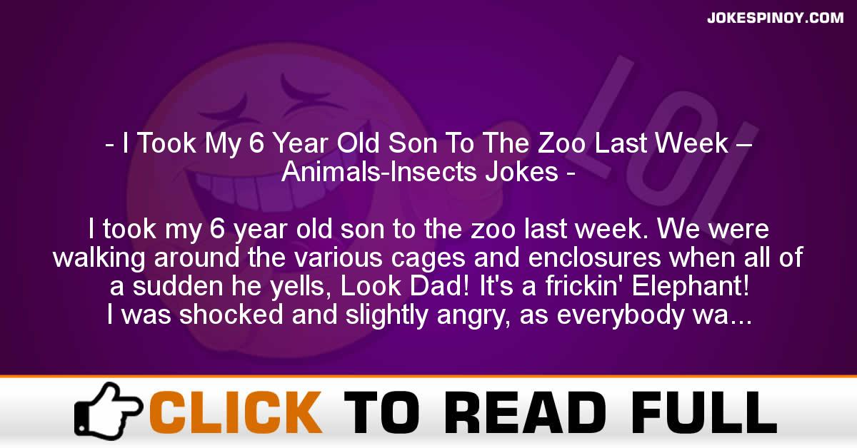 I Took My 6 Year Old Son To The Zoo Last Week – Animals-Insects Jokes