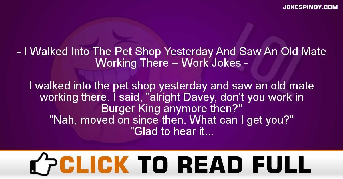 I Walked Into The Pet Shop Yesterday And Saw An Old Mate Working There – Work Jokes