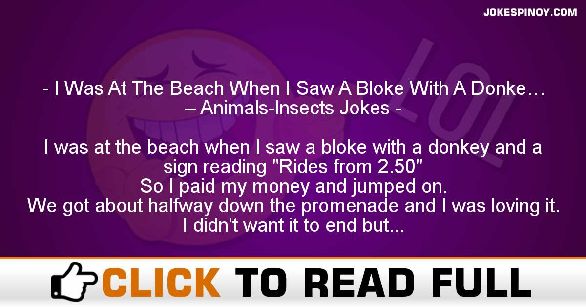 I Was At The Beach When I Saw A Bloke With A Donke… – Animals-Insects Jokes