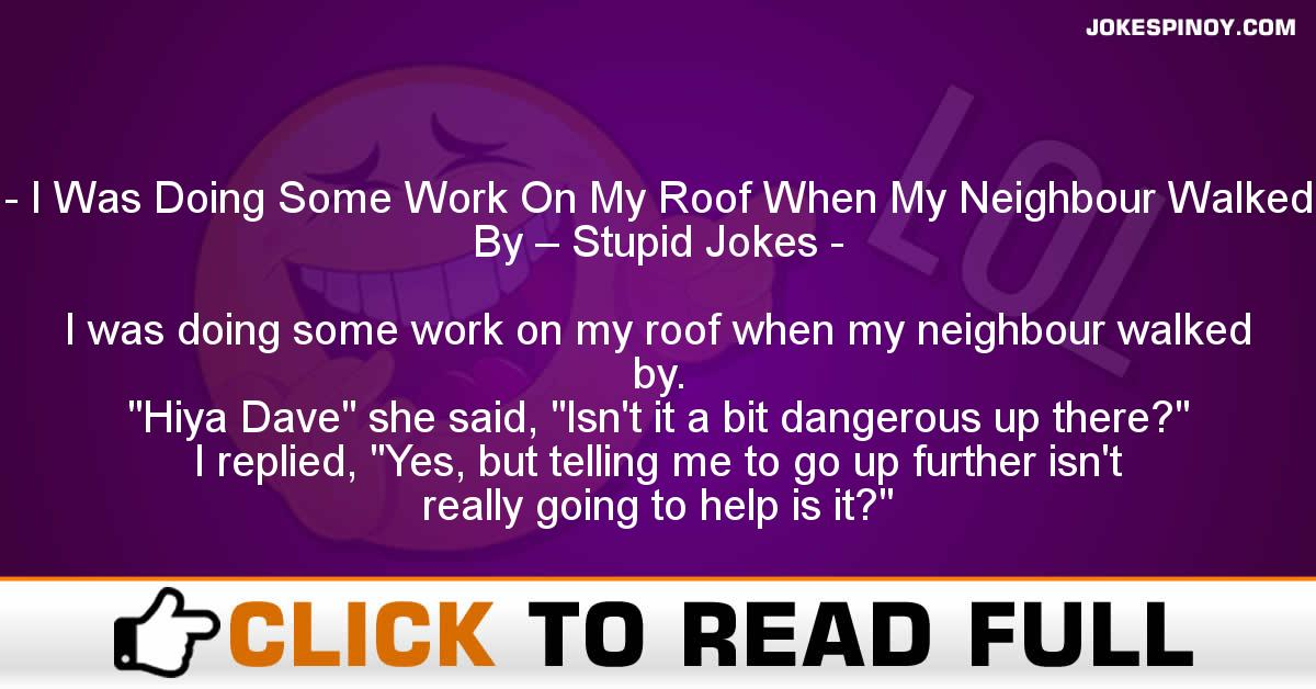 I Was Doing Some Work On My Roof When My Neighbour Walked By – Stupid Jokes