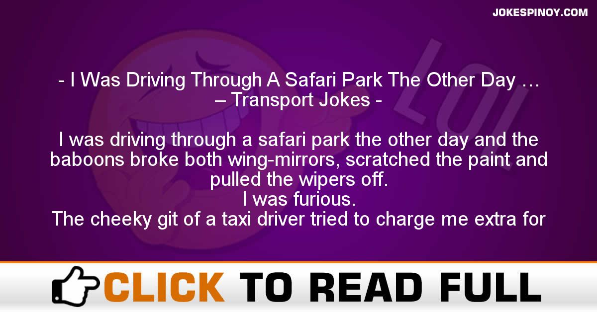 I Was Driving Through A Safari Park The Other Day … – Transport Jokes