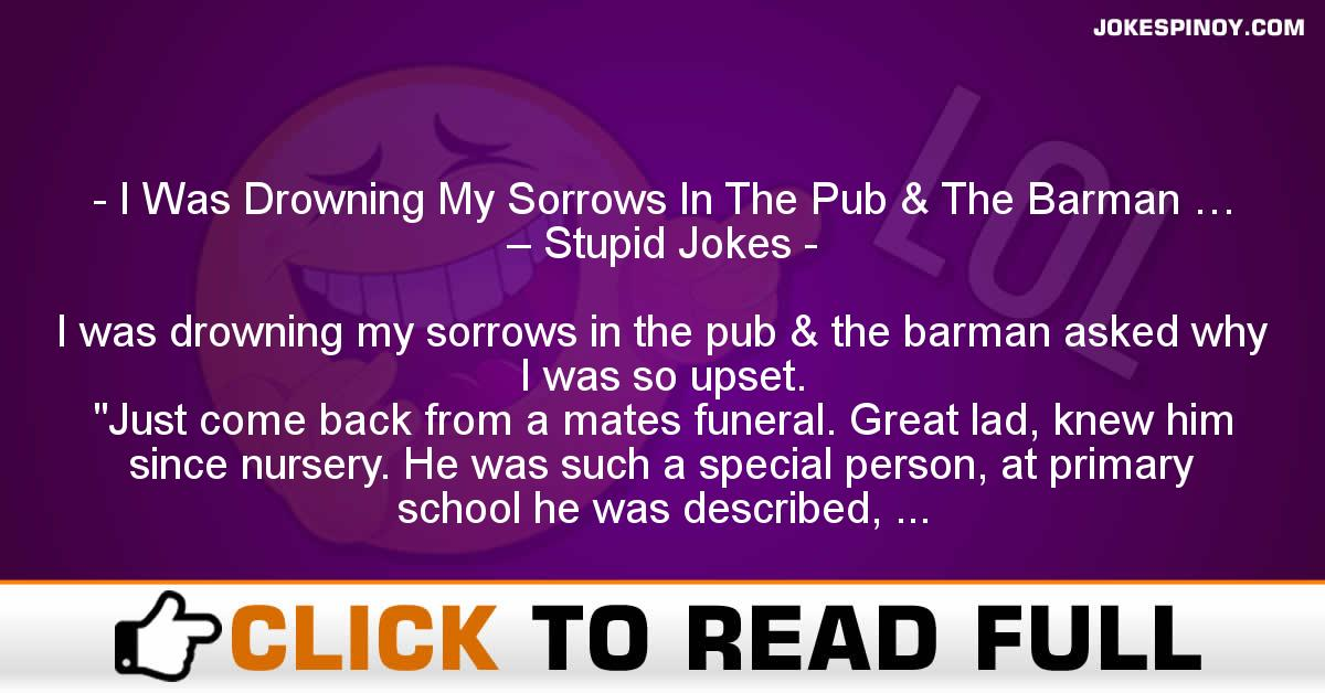 I Was Drowning My Sorrows In The Pub & The Barman … – Stupid Jokes