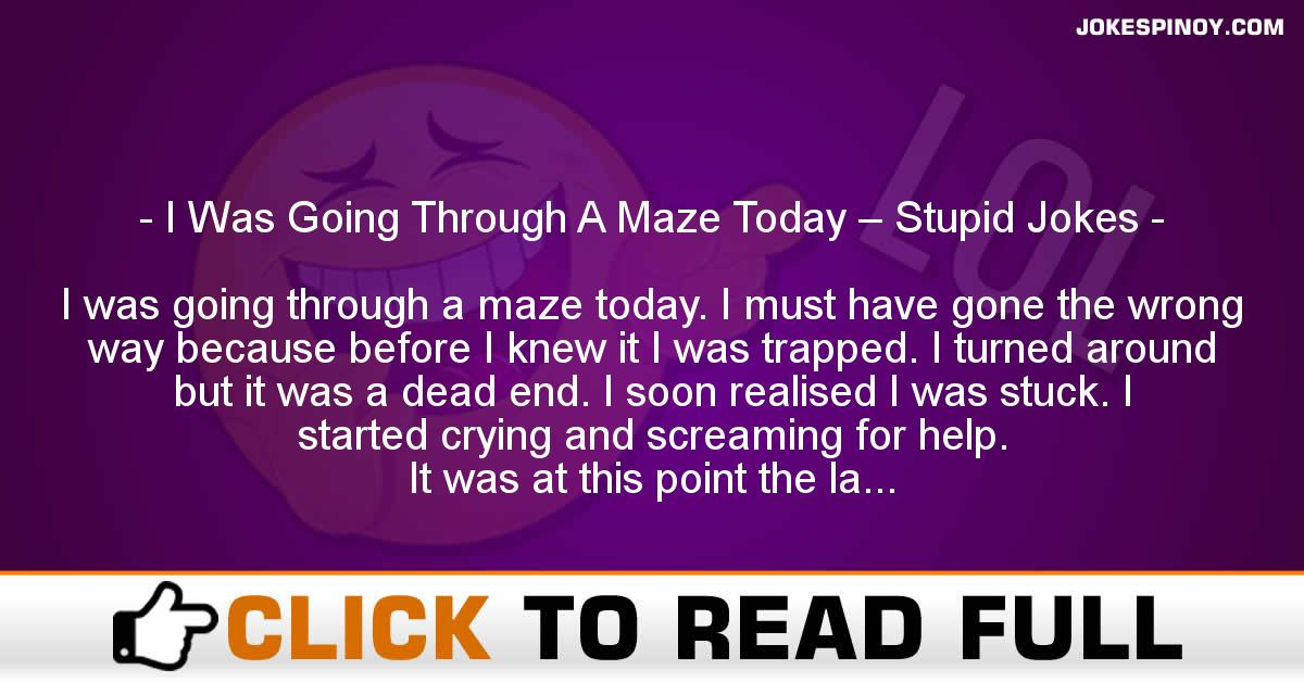 I Was Going Through A Maze Today – Stupid Jokes
