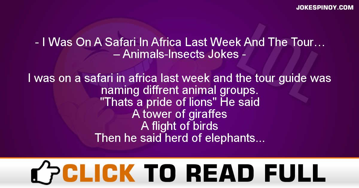 I Was On A Safari In Africa Last Week And The Tour… – Animals-Insects Jokes