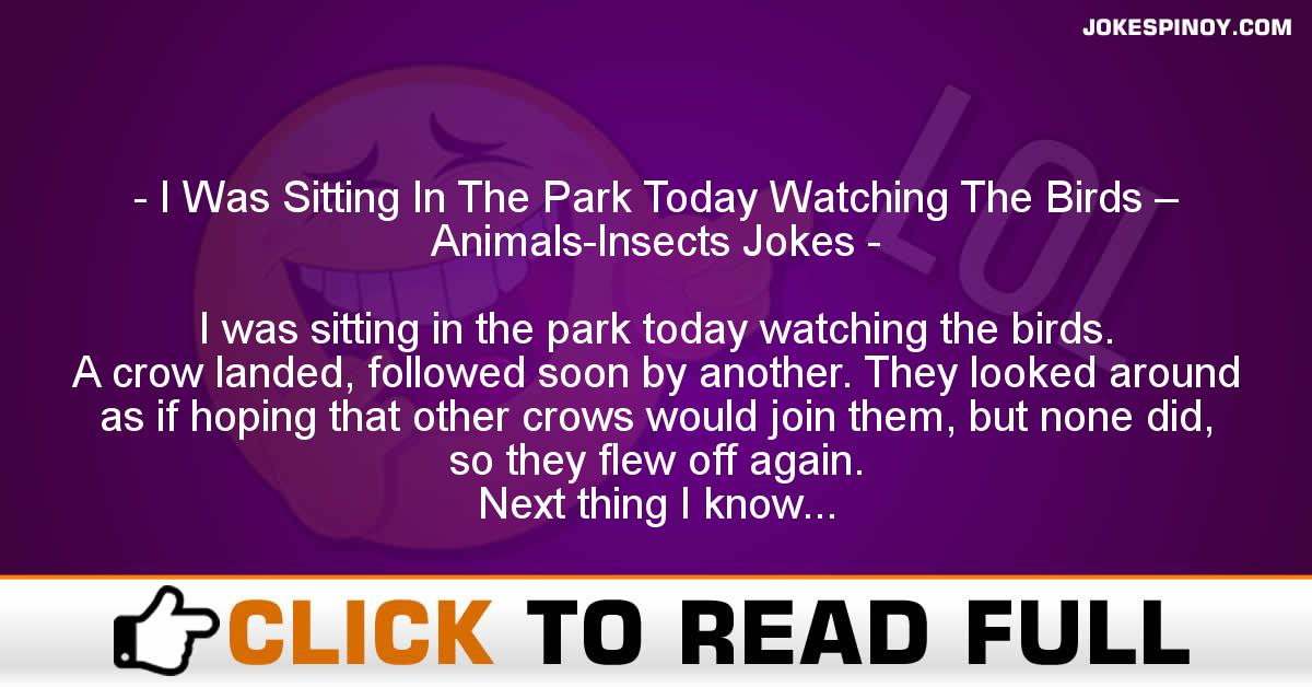 I Was Sitting In The Park Today Watching The Birds – Animals-Insects Jokes