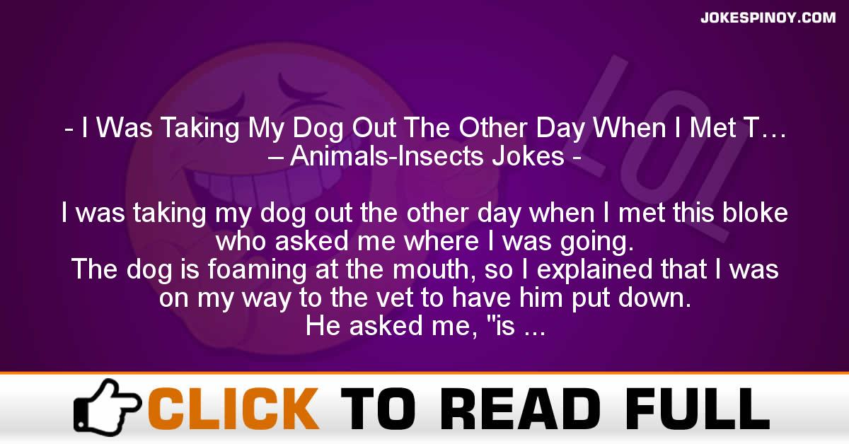 I Was Taking My Dog Out The Other Day When I Met T… – Animals-Insects Jokes