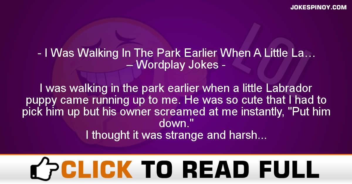 I Was Walking In The Park Earlier When A Little La… – Wordplay Jokes