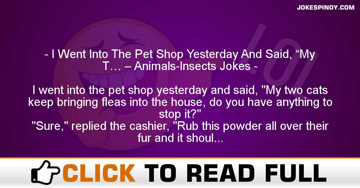 "I Went Into The Pet Shop Yesterday And Said, ""My T… – Animals-Insects Jokes"