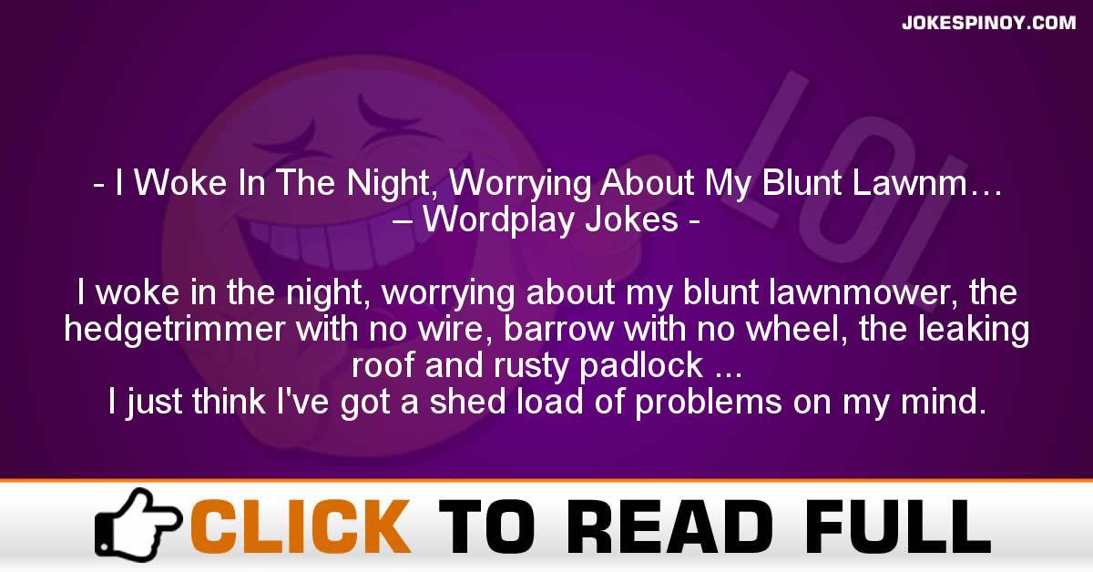 I Woke In The Night, Worrying About My Blunt Lawnm… – Wordplay Jokes
