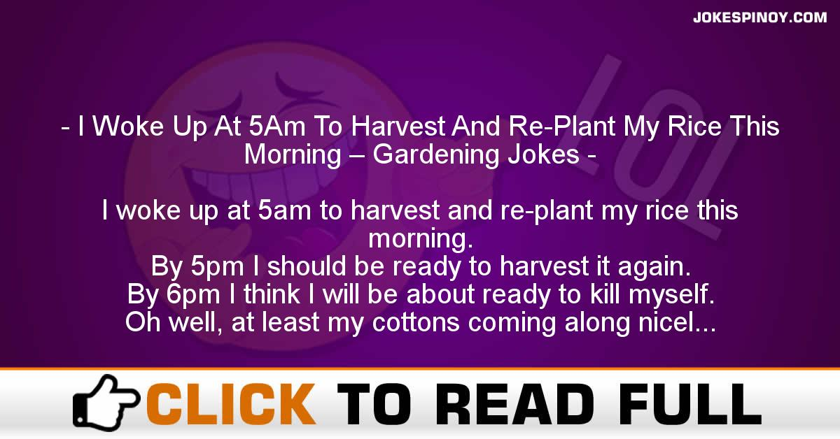 I Woke Up At 5Am To Harvest And Re-Plant My Rice This Morning – Gardening Jokes