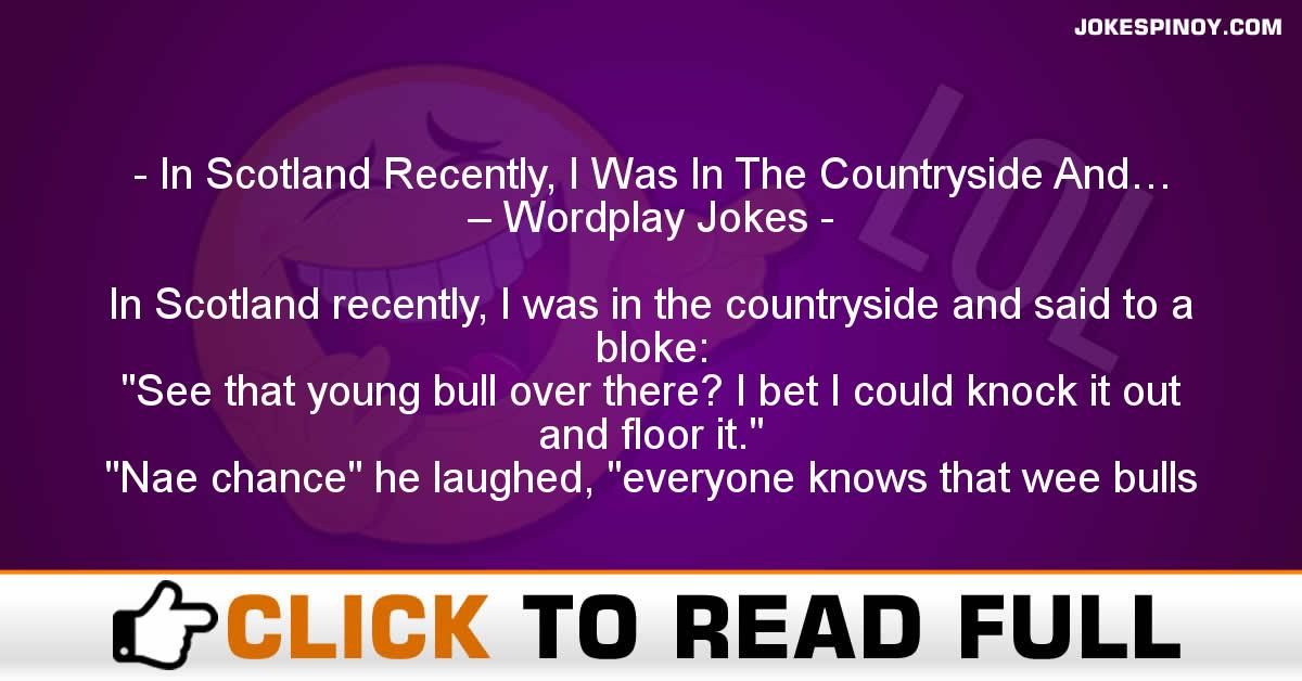 In Scotland Recently, I Was In The Countryside And… – Wordplay Jokes