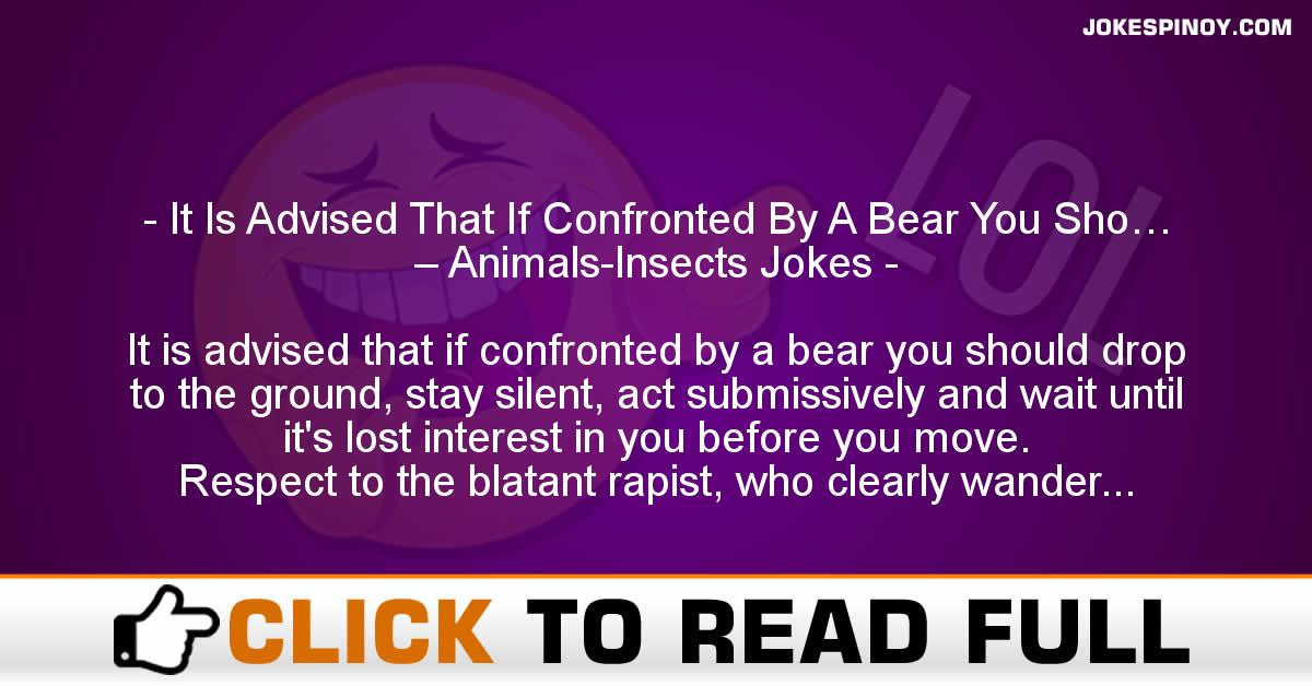 It Is Advised That If Confronted By A Bear You Sho… – Animals-Insects Jokes