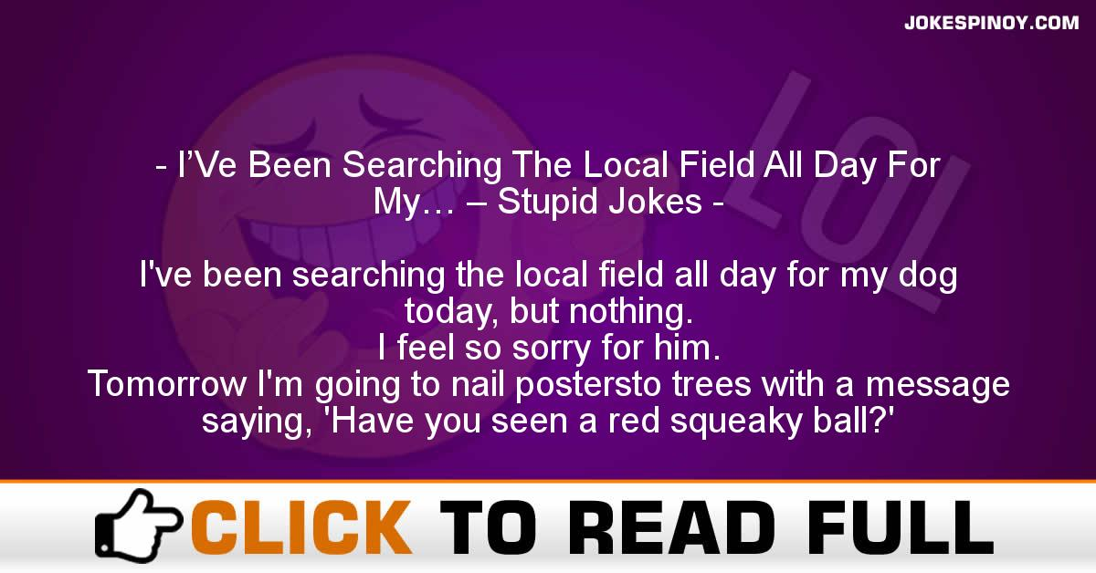 I'Ve Been Searching The Local Field All Day For My… – Stupid Jokes