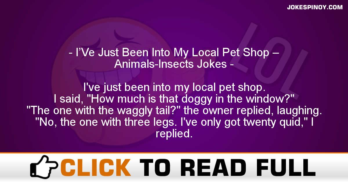 I'Ve Just Been Into My Local Pet Shop – Animals-Insects Jokes