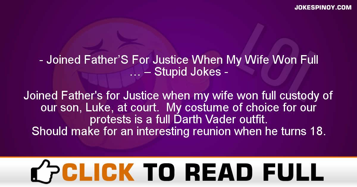 Joined Father'S For Justice When My Wife Won Full … – Stupid Jokes