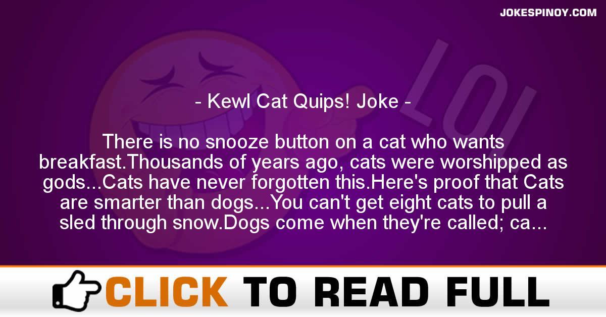 Kewl Cat Quips! Joke