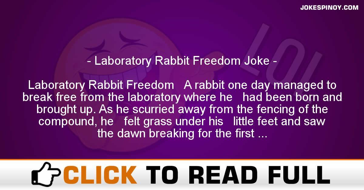 Laboratory Rabbit Freedom Joke