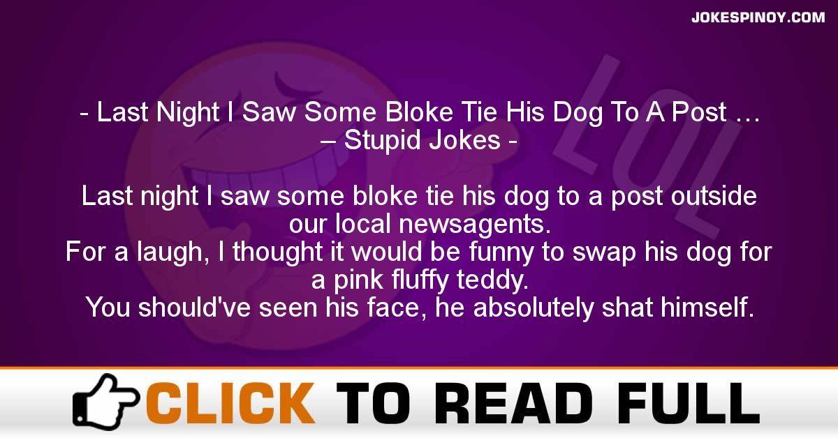 Last Night I Saw Some Bloke Tie His Dog To A Post … – Stupid Jokes