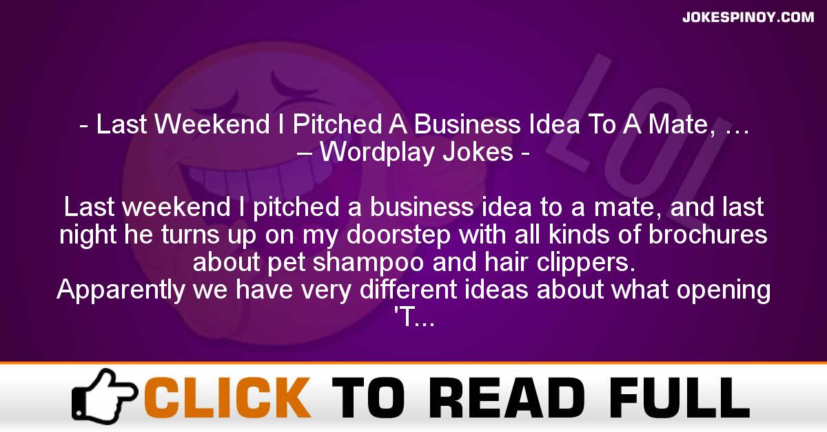 Last Weekend I Pitched A Business Idea To A Mate, … – Wordplay Jokes