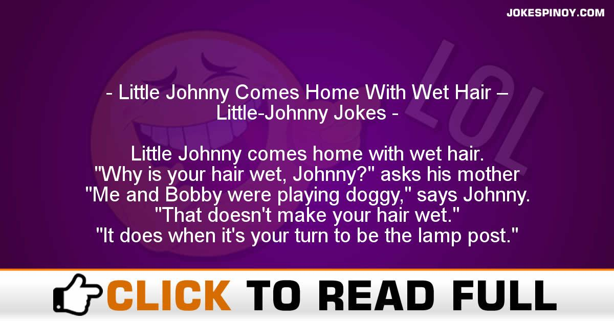Little Johnny Comes Home With Wet Hair – Little-Johnny Jokes