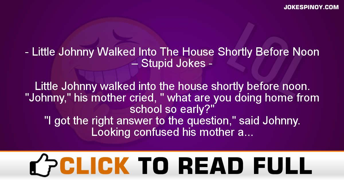 Little Johnny Walked Into The House Shortly Before Noon – Stupid Jokes
