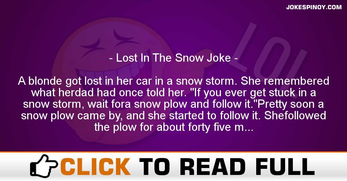 Lost In The Snow Joke