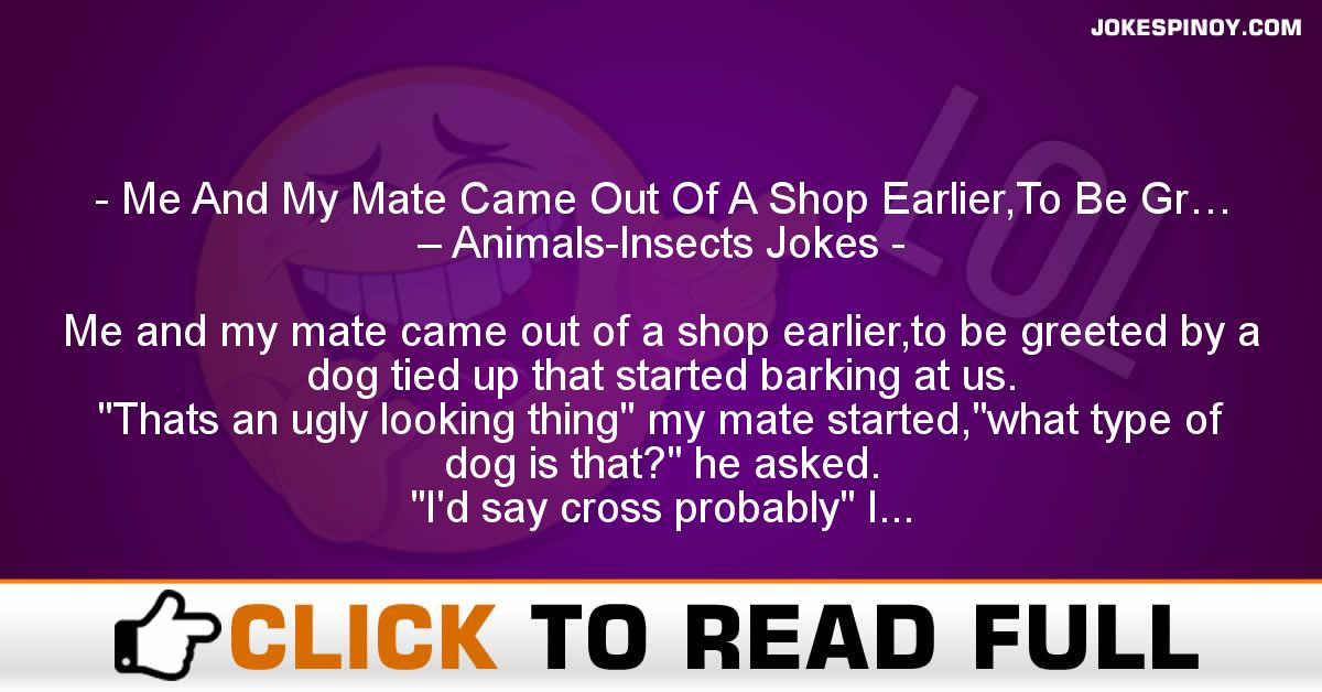 Me And My Mate Came Out Of A Shop Earlier,To Be Gr… – Animals-Insects Jokes